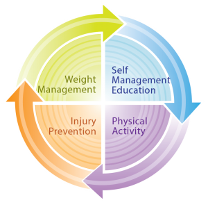 Circular diagram showing how a combination of weight management, self management education, physical activity and injury prevention can help reduce joint pain - Prevent OA - Osteoarthritis Action Alliance