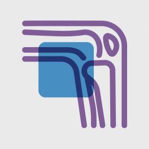 Prevent osteoarthritis - Osteoarthritis Action Alliance